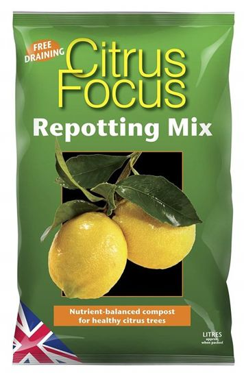 Growth Technology Citrus Focus Repotting Mix 8L - kompost do uprawy cytrusów
