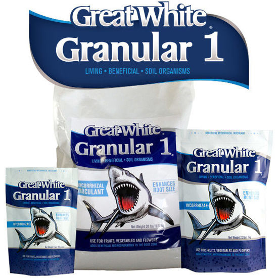 Plant Success- Great White Granular One 113g | Mikoryza w granulacie